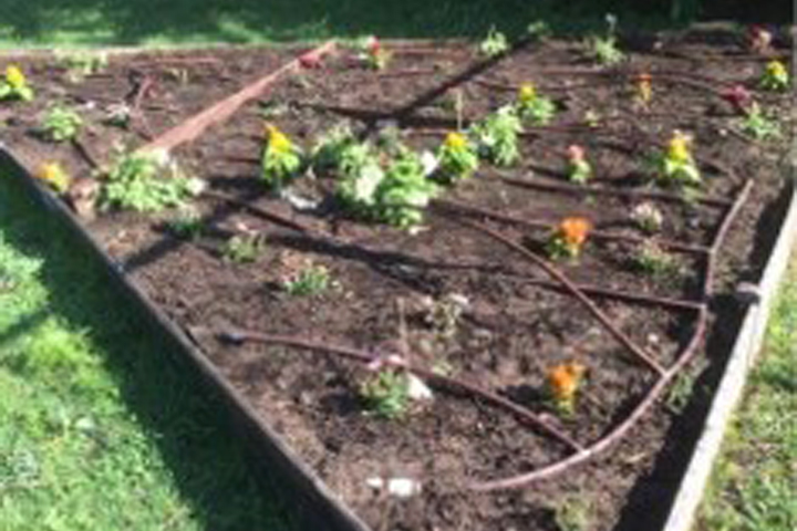 Outdoor Classroom with Educational Gardening